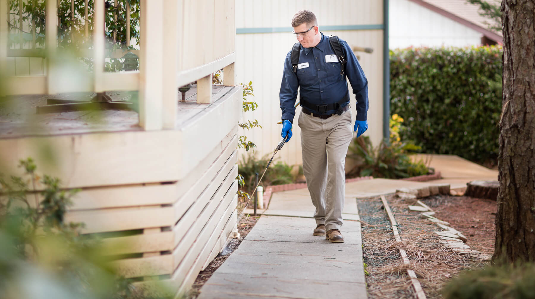Determining the Need for Bed Bug Exterminators
