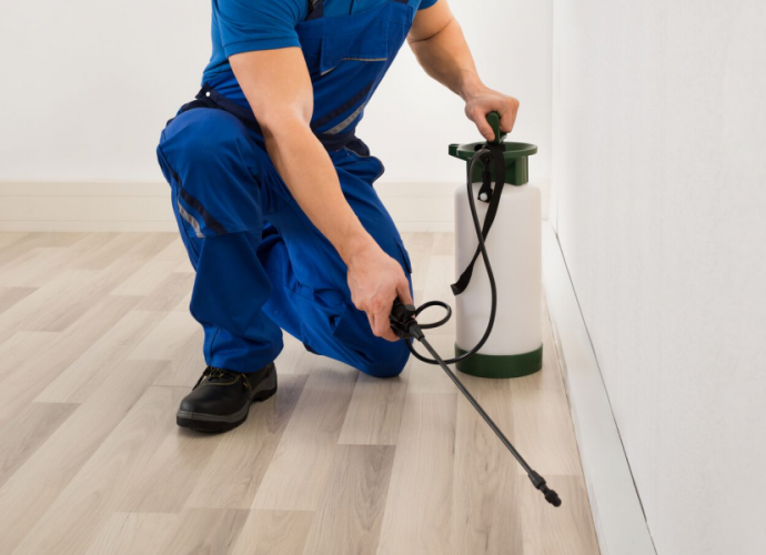 Get Rid Of The Pests By The Help Of The Commercial Pest Control Services