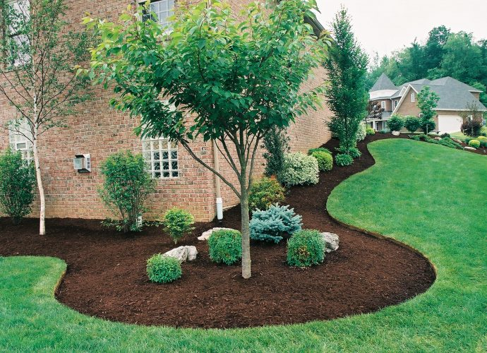 Landscaping Requires Proper Designing and Resources for Maintenance