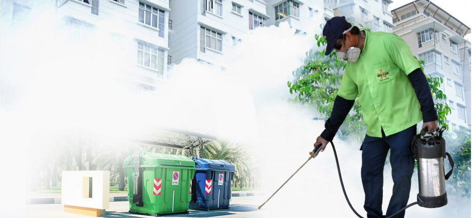 Make Your Home Healthy and Pest Free With The Help of Pest Control Company